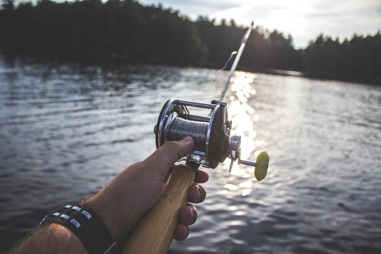 Oslomarkas fiskeadministrasjon