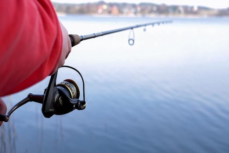 Hurdalsjøen fiskeadministrasjon